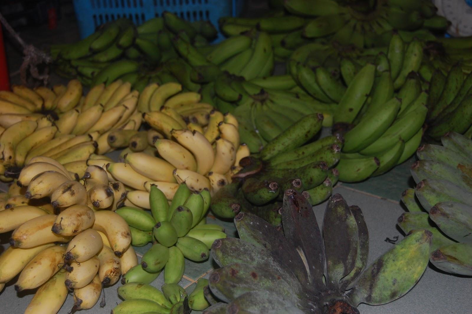 Bananas Pisang Abu Suria Helang Lui